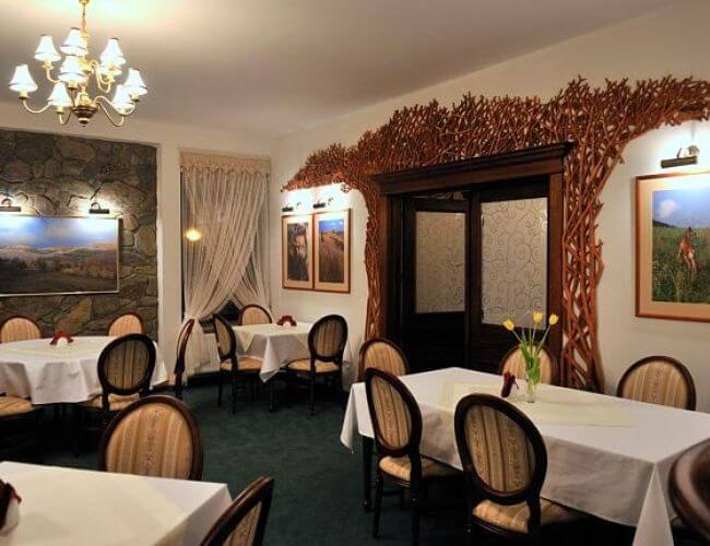 Hotel Restauracja SALAMANDRA-247